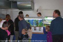 Ausstellung 2009 137