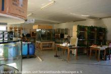 045_Ausstellung2011-Aufbau