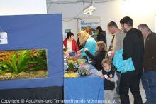 Ausstellung_2013-11-01_ 273