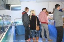 Ausstellung_2013-11-01_ 280