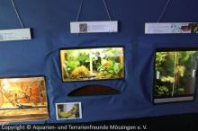 Ausstellung_2013-11-01_ 257