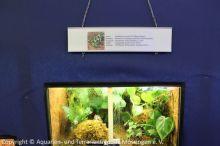 Ausstellung_2013-10-31_ 110