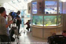 Einweihung_Meerwasseraquarium_Kinderklinik_04