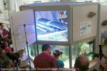 Einweihung_Meerwasseraquarium_Kinderklinik_10