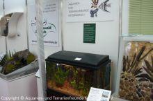 11_Aquarium-ATFM_02