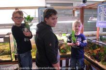 Jugend-Aquarium-einrichten_00