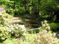 Fuehrung-Botanischer-Garten-Tuebingen_10