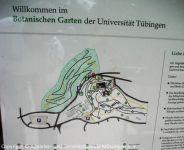 Fuehrung-Botanischer-Garten-Tuebingen_25