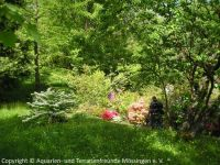 Fuehrung-Botanischer-Garten-Tuebingen_09