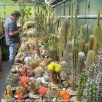 Fuehrung-Botanischer-Garten-Tuebingen_22