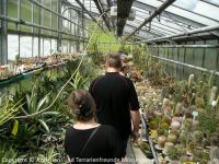 Fuehrung-Botanischer-Garten-Tuebingen_20