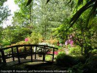 Fuehrung-Botanischer-Garten-Tuebingen_15