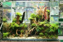 042_Aussteller-Aquarium