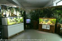 001_Schauaquarien_neben_Amazonas-Pavillon_(unseres_rechts)