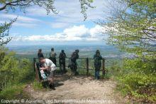 03_Maiwanderung_Gruener-Fels