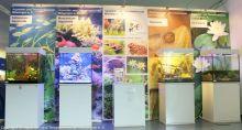 Aquarien-unserer-Ausstellungen_22