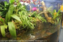 Aquarien-unserer-Ausstellungen_03