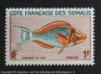 1_SOMALIA