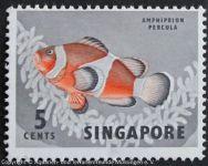 Amphiprion_percula_SINGAPUR