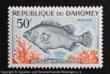 Lobotes_surinamensis_DAHOME