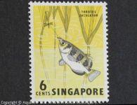 Toxotes_jaculatrix_SINGAPUR