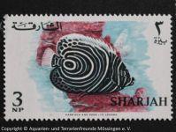 2_SHARJAH