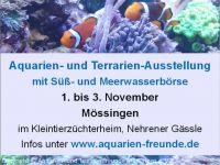 aquarienfreunde-moessingen1